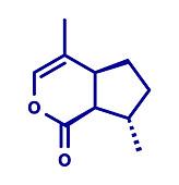 Nepetalactone catnip cat attractant molecule, illustration