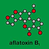 Aflatoxin B1 mould carcinogenic molecule, illustration