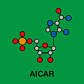 AICA ribonucleotide performance enhancing drug, illustration