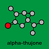 Thujone absinthe molecule, illustration