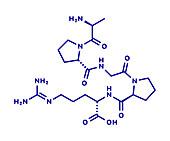 Enterostatin signalling peptide molecule, illustration