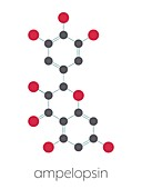 Dihydromyricetin or herbal drug molecule, illustration