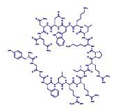 Dynorphin a endogenous opioid peptide molecule, illustration