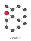 Geosmin earthy flavour molecule, illustration