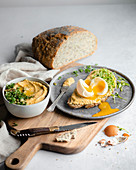 Slices of bread with hummus, cress and soft-boiled egg