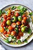 Tomato Salad Close Up