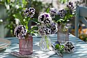Vasen mit gekräuselten Stiefmütterchen 'Purple White Rim' als Tischdeko