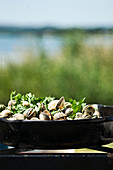 Vongole with herbs in a pan on a camping grill