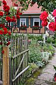 Rosen am offenen Gartentor und Blick auf Bauernhaus und Bauerngarten