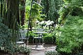 Schattiger Sitzplatz unter Palmen im Jardin Agapanthe, Normandie, Frankreich
