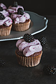 Chocolate cupcakes with black curant cream cheese frosting and decorated with blackberries