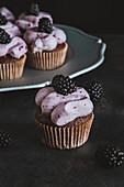 Schokoladencupcakes mit Brombeercreme