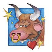 Taurus zodiac sign, illustration