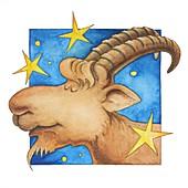 Capricorn zodiac sign, illustration