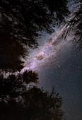 Milky Way over Atacama desert, Chile