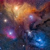 Rho Ophiuchi nebula complex