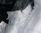 Iceberg calved from Pine Island Glacier, Antarctica