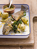 Oven-baked char with parsley potatoes