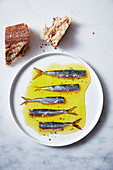 Sardines and anchovies in lemon thyme oil