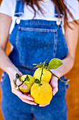 Girl holds fresh lemons