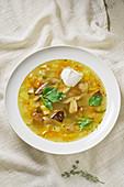 Porcini mushroom soup with sour cream (Russia)