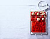 Gelee-Pudding-Trifle-Schnitten mit Himbeeren
