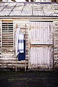 Leiter mit Tüchern an einer Scheune mit abgeblätterter Farbe
