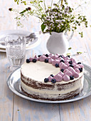 Summer blueberry cake