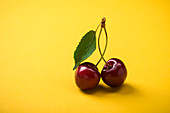 Sweet cherries (prunus avium)