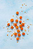 Marigold flowers on a light-blue surface