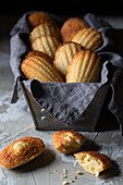 Traditional yummy homemade Madeleine cookies placed on black container with napkin on wooden table