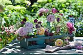 Kleine Sträuße mit Rosen, Wiesenkümmel, Vexiernelken, Witwenblumen, Bartnelken und Ziest in Holzkasten
