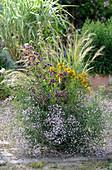 Bienenfreundliche Bepflanzung: Oregano, Johanniskraut, Schleierkraut, Witwenblume und Federgras