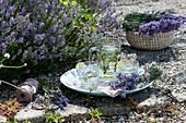 Schale mit Lavendel-Strauß, Krug und Gläser mit Limetten-Minze-Wasser, blühender Lavendel im Beet
