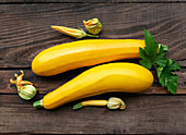 Fresh yellow zucchini and zucchini flowers on a wooden background