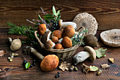 Autumn still life with fresh boletus mushrooms