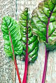 Organic swiss chard