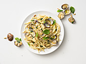 Trofie with clams, basil and roasted pine nuts