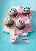 Coloured 'owl' cupcaces
