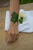Malvenblätter als Breiumschlag, bei Wunden und Entzündungen