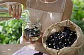 Stockrosenwein zubereiten: Stockrosenblüten mit Weißwein angiessen