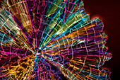 Liqueur, polarised light micrograph