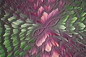 Decorative chemicals, polarised light micrograph