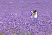 Tourists in lavender field