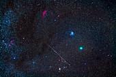 Comet Wirtanen and meteor