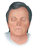 Elderly face, illustration