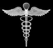 Caduceus, X-ray