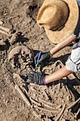 Archaeologist excavating skeleton