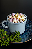 Homemade cocoa drink, hot chocolate with marshmallows