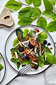 Salat mit Rotbuchenblättern, Löwenzahn, Brombeeren und Parmaschinken
